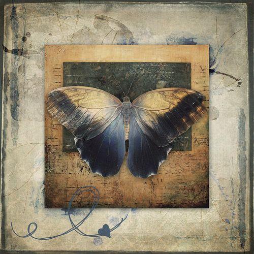 Becoming myself - vlinder
