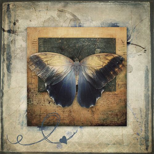 Becoming myself - vlinder van