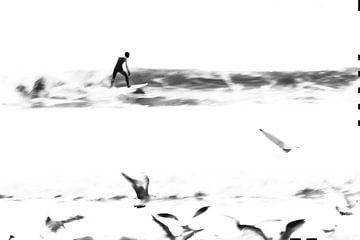 BIRDS sur Mon Vilain