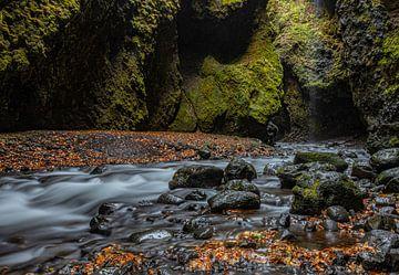 Isländischer Wasserfluss von leon brouwer