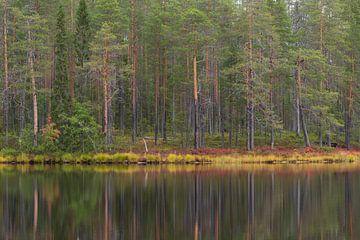 Finse herfst van Willemke de Bruin