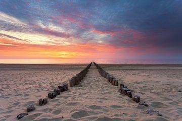 Hier aan de kust van Gijs Koole