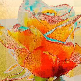 Roos von Arie Van Garderen