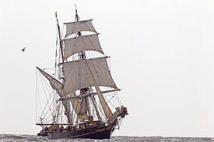 Tres Hombres op volle zee richting thuishaven van