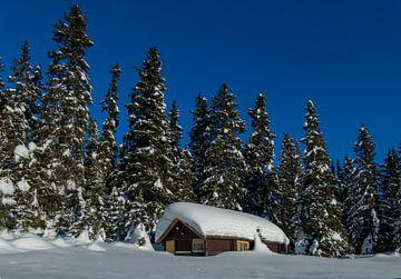 Winter in Noorwegen van Adelheid Smitt