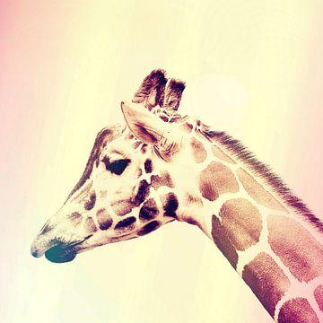 De Giraffe van Laurance Didden