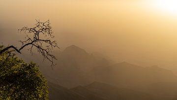 Einsamer Baum in den Bergen von Jeroen Kleiberg