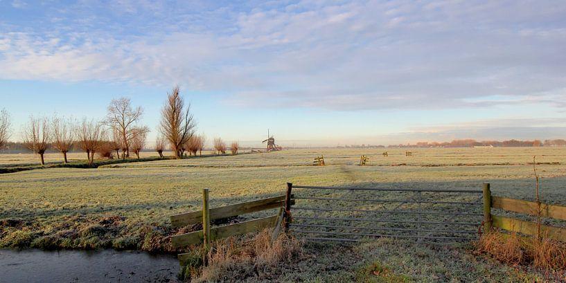 Frost in der Polder von Yvonne Blokland