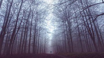 Femme dans le brouillard dans le Westerwald sur flotografie