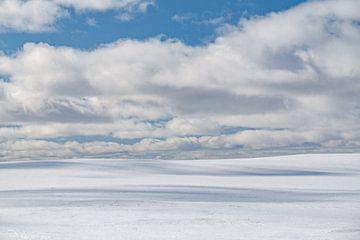winterse heuvels van Leo Schindzielorz