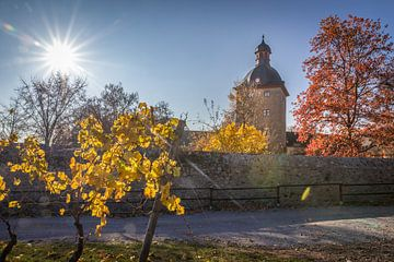 Herbsttag bei Schloss Vollrads van Christian Müringer