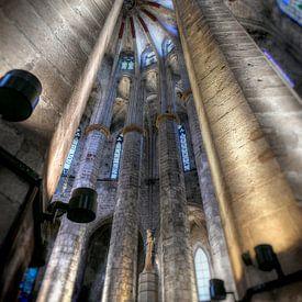 Katedra Santa Maria del Mar - Barcelona van Rob Severijnen