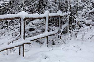 Winterlandschap van