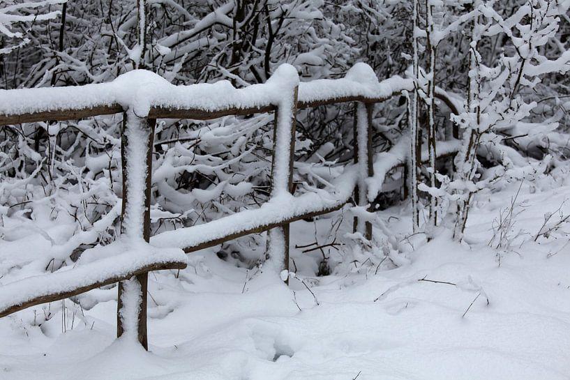 Winterlandschaft von Vanessa Devolder
