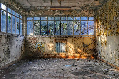 Urbex in een oude werkplaats in Charleroi. van