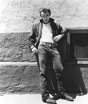 James Dean op de set van Rebel Without A Cause, 1955 van Bridgeman Images