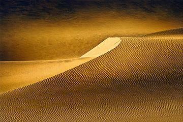 Gouden woestijn van Peter Poppe