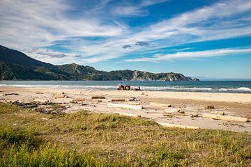 Anaura Bay van Valerie Tintel