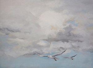 Wolkenlucht met meeuwen