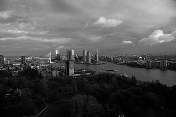Skyline Rotterdam van Wytze Plantenga