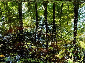 Water reflectie van Carla van Zomeren