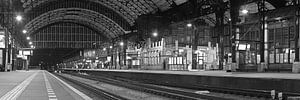 Panorama station Haarlem zwart wit. van