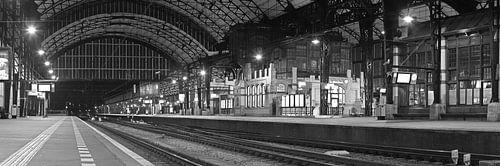 Panorama station Haarlem zwart wit.