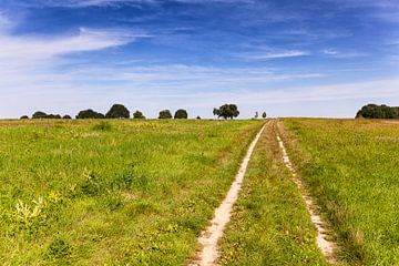 Karrespoor in Limburgs heuvelland van