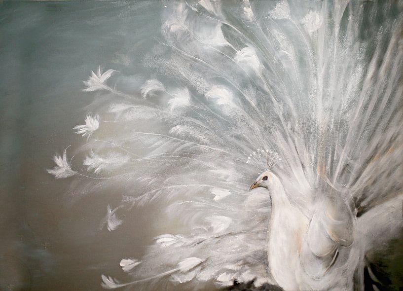 witte pauw ( white peacock) van Els Fonteine