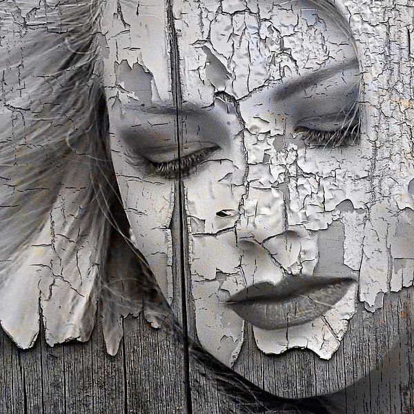 Peeling painted lady von PictureWork - Digital artist