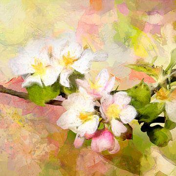 appelbloesem van Andreas Wemmje