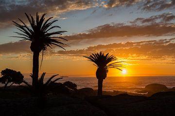 Kaapstad sunset van Peter Leenen