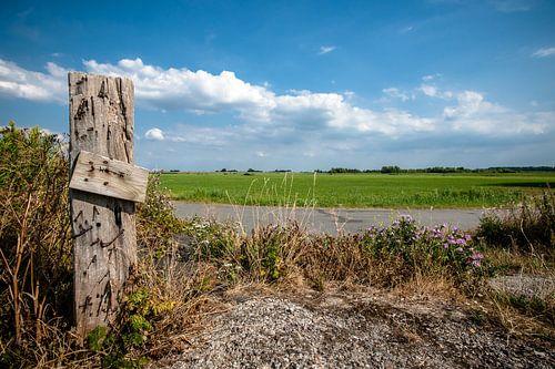 Hollands landschap met weilanden en wolkenlucht