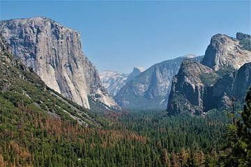 Yosemite National Park von Christiaan Van Den Berg