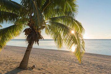 Sonnenaufgang Aitutaki von Laura Vink