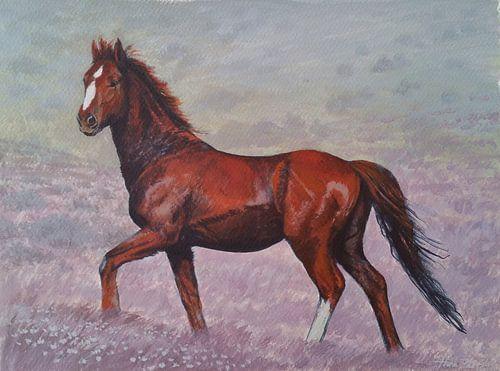 Bruin Paard in landschap van