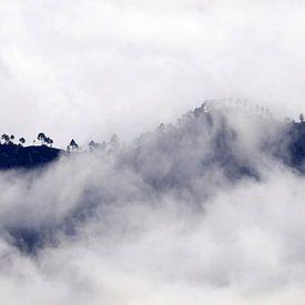 Tussen de wolken van Jolanta Mayerberg