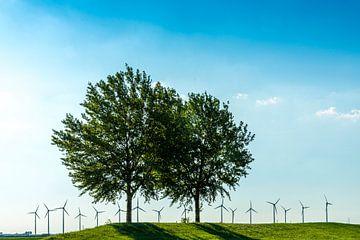 Natuur en alternatieve energie van Ruurd Dankloff