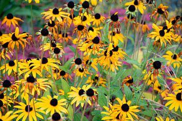 Blütenkomposition von Bianca ter Riet