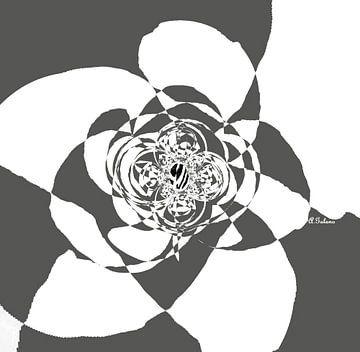 Rose- B&W Samenvatting van Annaluiza Dovinos