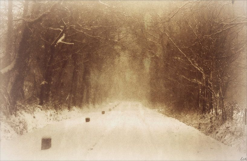 Winter wonderland. van Esh Photography