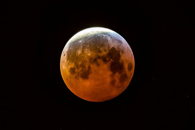 Blood Moon in 2019 von AGAMI Photo Agency