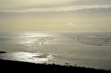 Winter, kruiend ijs op het IJsselmeer van
