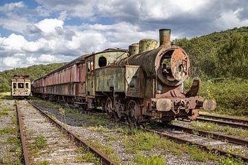 De oude trein van Paul Lagendijk