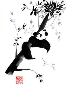 Panda in seinem Baum 06 von philippe imbert