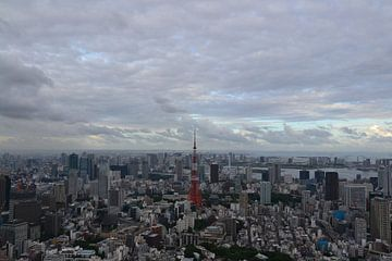 Tokyo Skyline van Wessel Smit