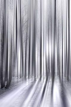 Winterbos van Violetta Honkisz