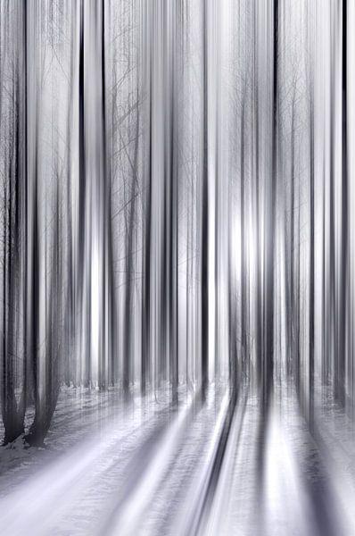 Winterwald van Violetta Honkisz