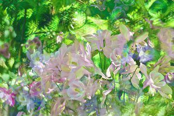 Frühlingssonne im Garten von Marianna Pobedimova