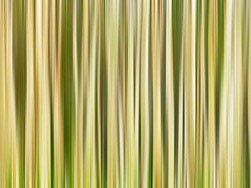 Hint of Trees (Abstracte Boomstammen in Geel-groen) van Caroline Lichthart